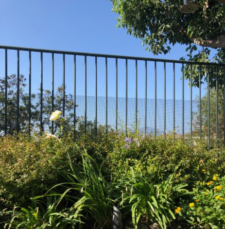 view of wildlife fencing protecting a beautiful garden. installed by Advanced Wildlife Removal.