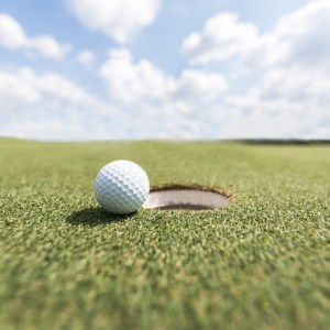 fine turf golf ball green ags anthracnose turf nutrition