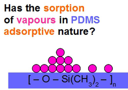 Sorption of vapours and liquids in PDMS novel d