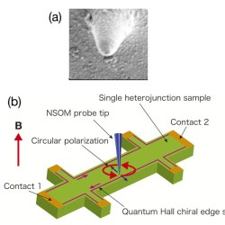 Circularly polarized near-field scanning optical microscope for investigations of edge states of a two-dimensional electron system. Advances In Engineering