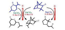 One-pot anodic lactonization of Fenchone and Menthone and electrosynthesis of a new magnolione analogue. Advances in Engineering