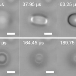 Focal Plane Shift Imaging for the Analysis of Dynamic Wetting Processes. Advances in Engineering