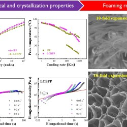 Fabrication of High Expansion Microcellular Injection-Molded Polypropylene Foams by Adding Long-Chain Branches Advance in Engineering