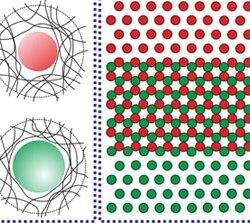 Binary plasmonic honeycomb structures (Advances in Engineering)
