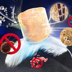 ultra-light antibacterial bagasse-AgNP aerogel (Advances in Engineering)