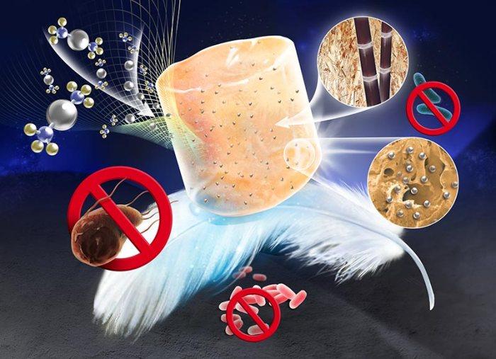 ultra-light antibacterial bagasse–silver nanoparticles aerogel (Advances in Engineering)