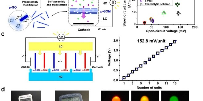 Osmotic Power Generation with Oppositely Charged Graphene ...