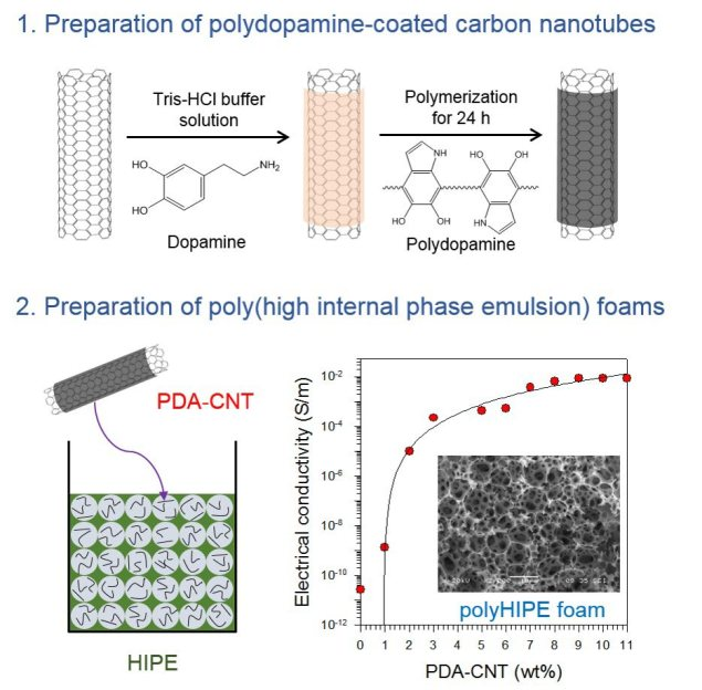 Conductive poly(high internal phase emulsion) foams incorporated with polydopamine-coated carbon nanotubes - Advances in engineering
