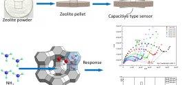 Gas sensing performance of ion-exchanged Y zeolites as an impedimetric ammonia sensor-Advances in Engineering