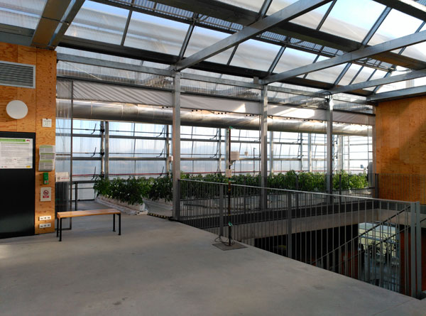 Building-integrated rooftop greenhouses Advances in Engineering-4