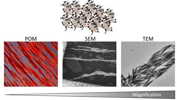 Liquid crystalline phases polymer functionalized ferri-magnetic Fe3O4 nanorods Advances in Engineering