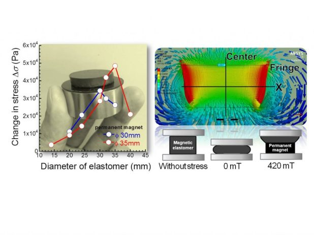 Magnetic field gradient and sample size effect on magneto-mechanical response for magnetic elastomers. Advances in Engineering