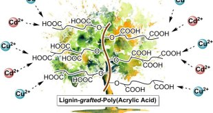 Lignin-graft-poly(acrylic acid) for enhancement of heavy metal ion biosorption. Advances in Engineering