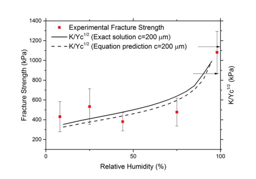 Controlled relative humidity storage for high toughness and strength of binderless green pellets. Advances in Engineering