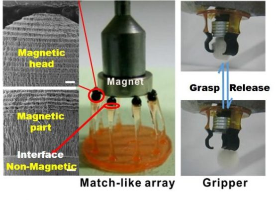 Multi-materials 3D Printing for Free Assembly Manufacturing of Magnetic Driving Soft Actuator. Advances in Engineering