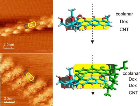 Doxorubicin Adsorbed on Carbon Nanotubes: Helical Structure and New Release Trigger. Advances in Engineering