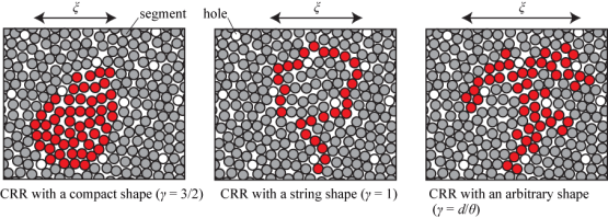 Dynamic cooperative region is controlled by its surface area - Advances Engineering