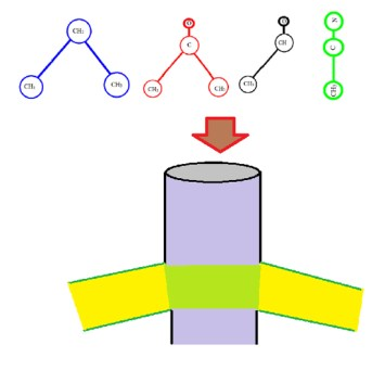 Molecular shape dictates the dynamic course in narrow channels-Advances in Engineering