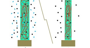 Molecular insight on gas transport in polymer membranes unveiled by NMR - Advances in Engineering