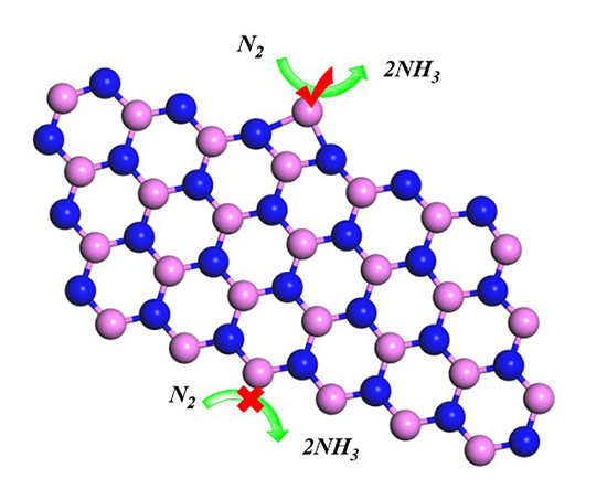 A single boron atom doped boron nitride edge as a metal-free catalyst for N2 fixation - Advances in Engineering