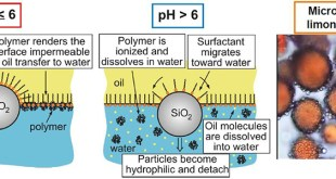 Encapsulation of oils and fragrances by core-in-shell structures from silica particles, polymers and surfactants - Advances in Engineering