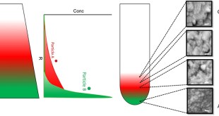 Binary colloidal nanoparticle concentration gradients in a centrifugal field at high concentration - Advances in Engineering