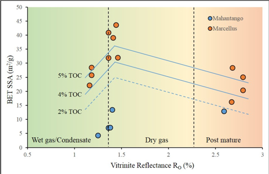 Porosity and storage capacity of Middle Devonian shale: A function of thermal maturity, total organic carbon, and clay content - Advances in Engineering