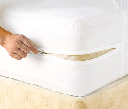 Mattress Covers Bed Bug Early Detection