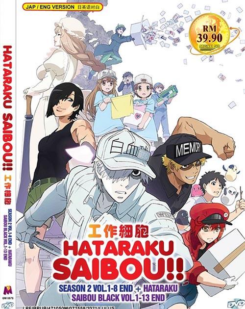 Hataraku Saibou!! Season 2 Vol.1-8 End - Hataraku Saibou Black Vol.1-13 End DVD