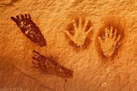Feet & Hands