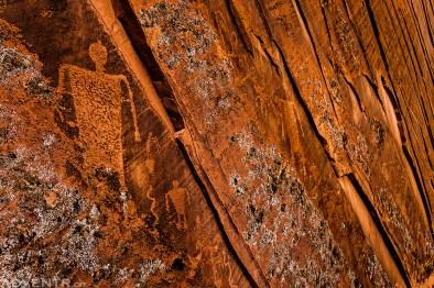 Lichen & Lines