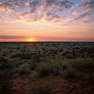 Sunrise Kalahari