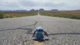 Stitch heading to Monument Valley