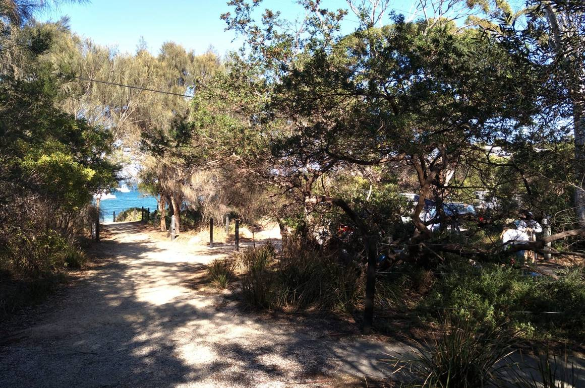 Freycient National Park campground