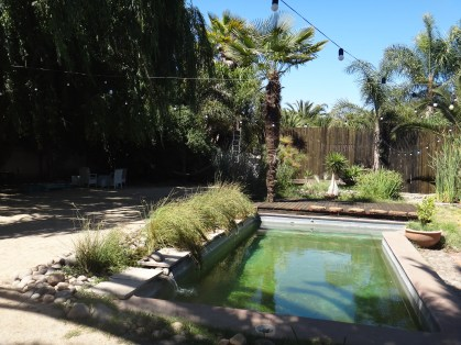The natural swimming pool in the walled garden-perfect for the end of a super hot day!