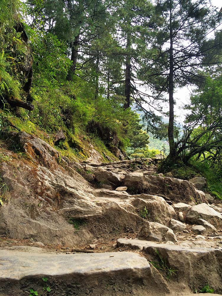 Stairs on the way to Namche Bazaar