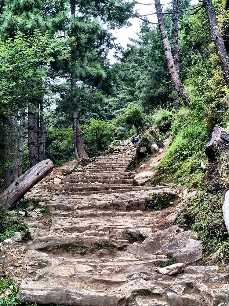 More Stairs on the way to Namche Bazaar