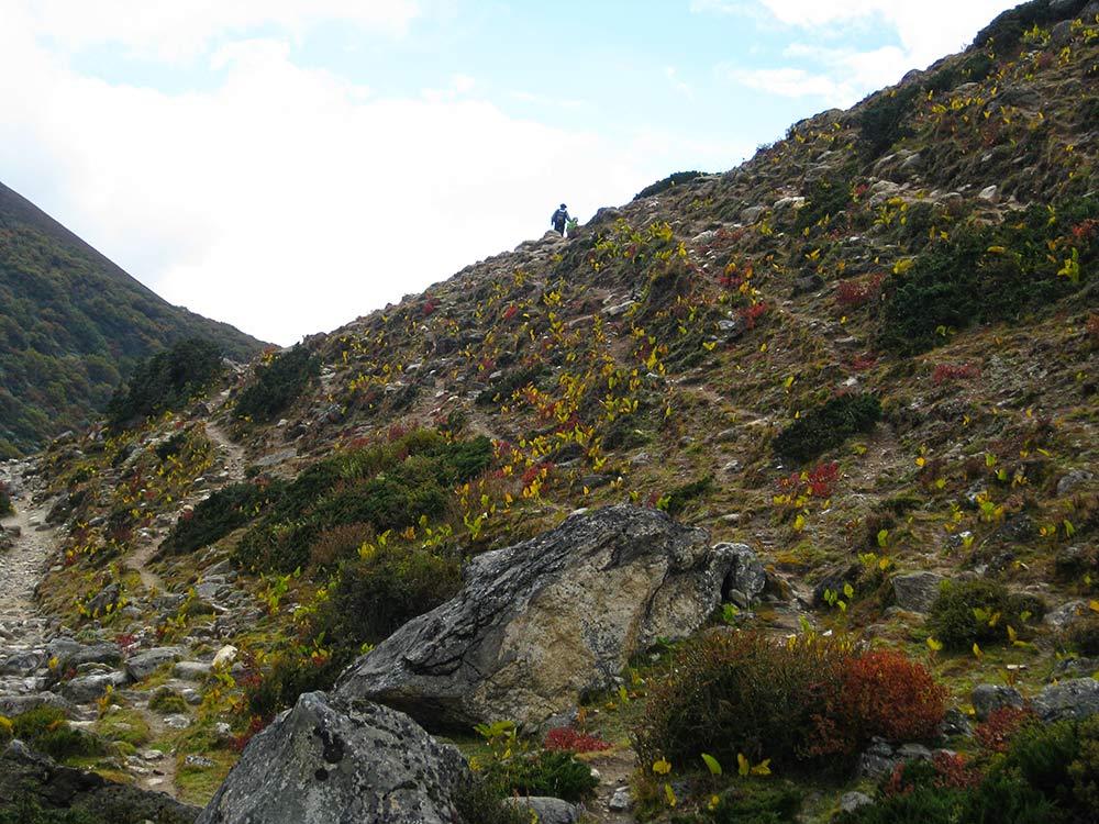 Above the Tree line - Everest Base Camp Trek