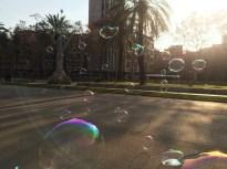 Bubbles in Parc Ciutadella