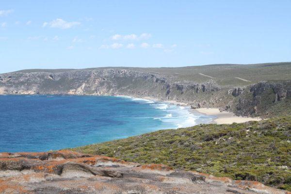 海岸線の写真