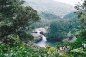 西表島のアイキャッチ画像