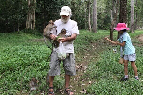 サルに餌をやる写真