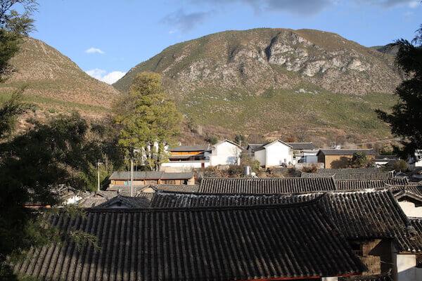 演舞場から裏山を眺める写真