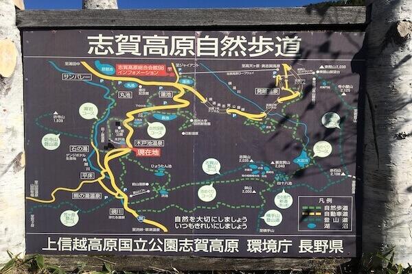 志賀高原の遊歩道ルートの写真