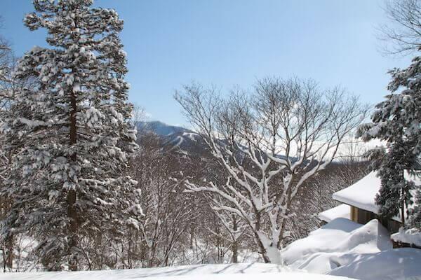 奥社からの景色の写真