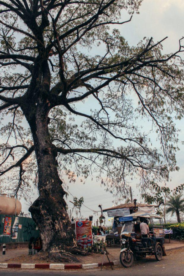 kiras-858-1