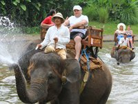 Bali Elephant Riding