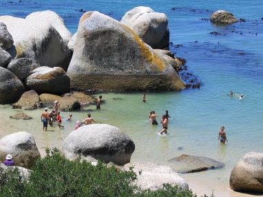 800px-swimmers_at_boulders_beach_cape_town