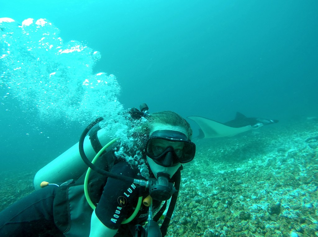 Giant Manta Ray photobomb!
