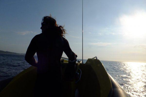 To the horizon and beyond